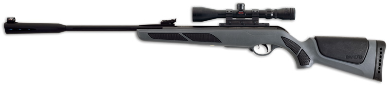 Gamo Whisper air rifle.
