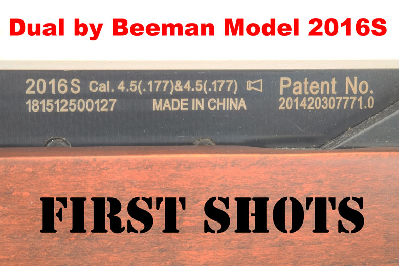 Dual by Beeman Model 2016S - First Shots