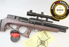 FX Wildcat Air Rifle Test Review .22 Caliber