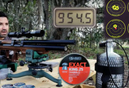 New AEAC Video: Shooting the Kalibrgun Cricket in .25 Caliber