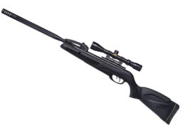 New 10 Shot Quick-Shot Gamo Swarm Maxxim Air Rifle