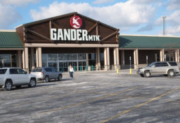 Gander Mountain, Subsidiaries File for Chapter 11 Reorganization.