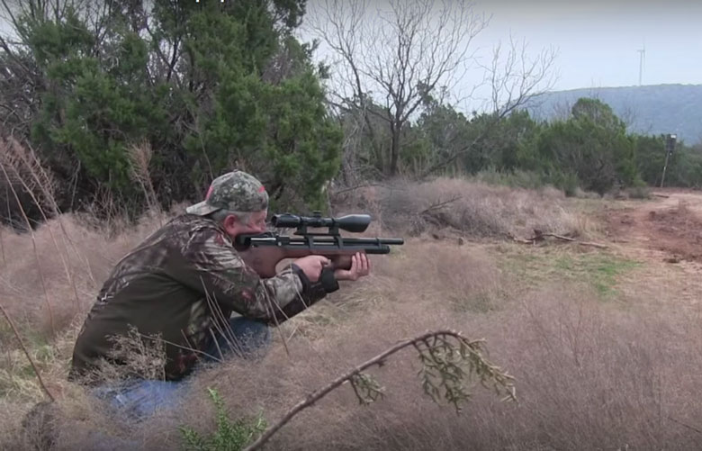 Jim Chapman Hunts Rabbits in Texas With A Kral Puncher Breaker.