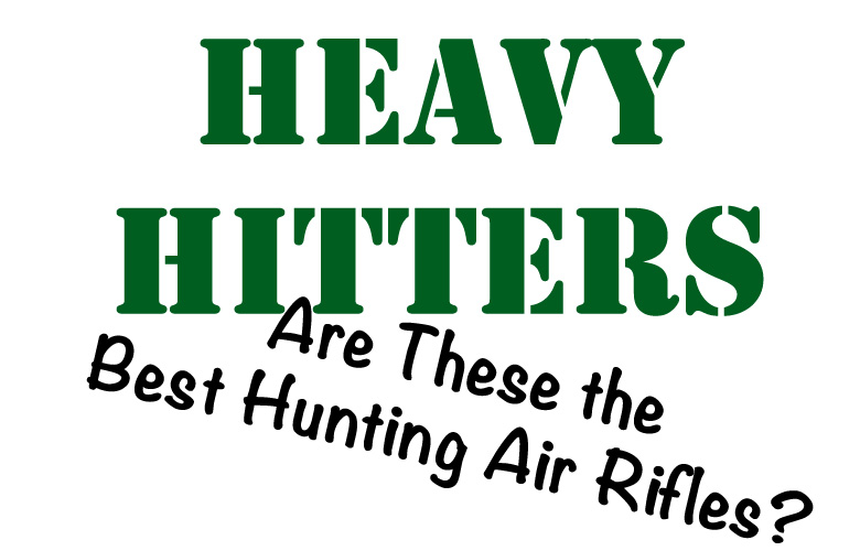 Are these the best hunting air rifles.