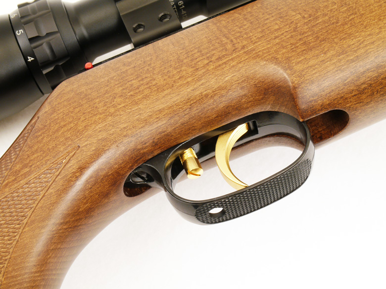 Beeman R9 airgun test review