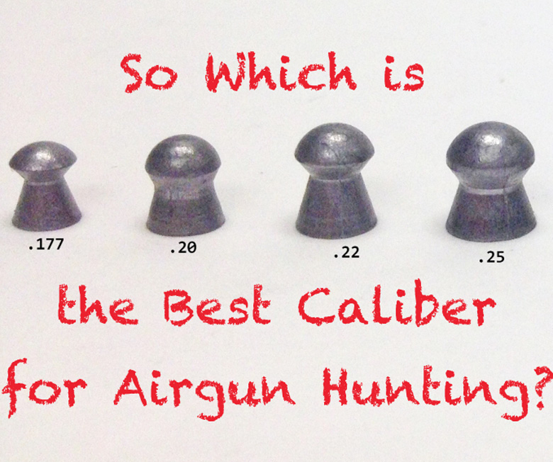 Which is the best Caliber for Airgun Hunting?