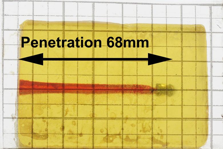 Beeman Kodiak 21.14 Grain .22 Caliber Pellet Test Review