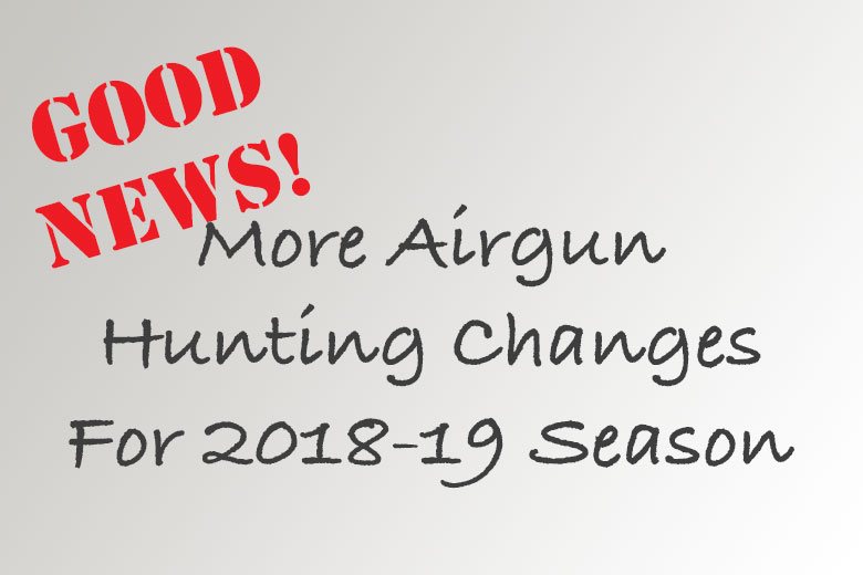 New Airgun Hunting Changes To Come For Florida In 2018-19 Season