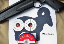 Ron Jones Reviews The Crosman American Classic - Part Two