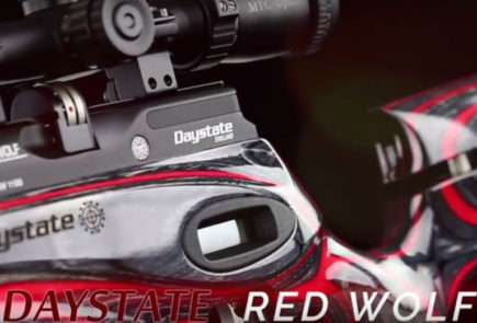 Daystate Red Wolf Laminate HP Video Review