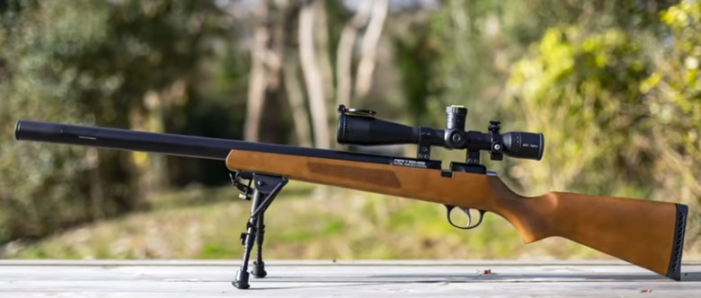 Giles Rebuilds His Artemis M30 PCP Air Rifle