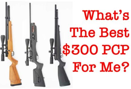 What's The Best $300 PCP For Me?What's The Best $300 PCP For Me?