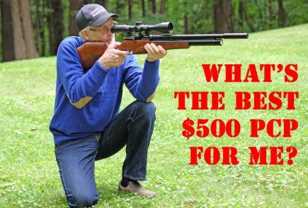What's The Best $500 PCP Air Rifle For Me?