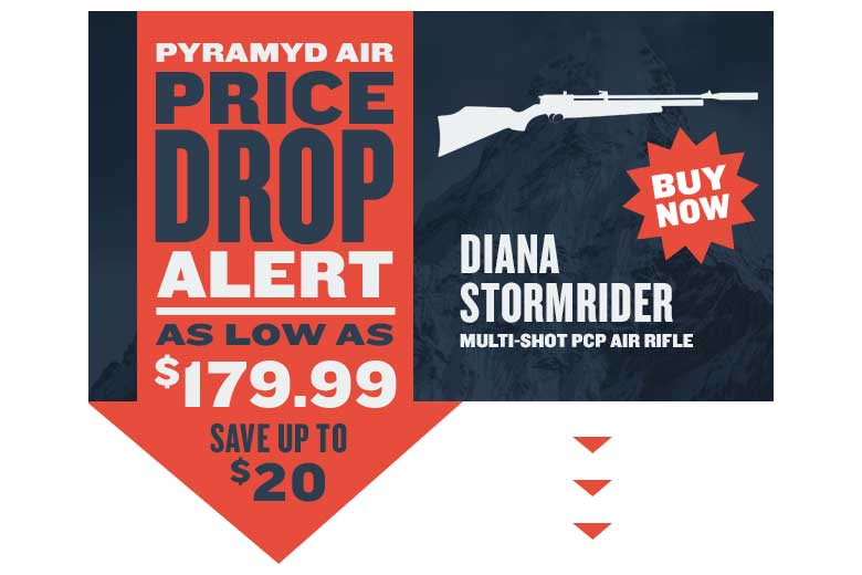 Diana Stormrider Price Cut - And Free Pellets Too