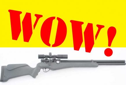 Umarex Origin - It's The Best First PCP Air Rifle