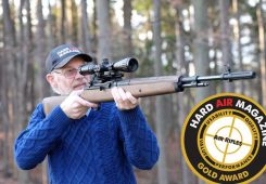 Springfield Armory M1A Air Rifle Test Review .177 Caliber