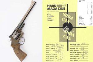 Does The M29 BB Gun Shoot Pellets? It Sure Does!